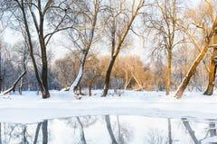 不冻池塘在冬天 免版税库存图片
