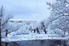 不冻结池塘在冬天 库存照片
