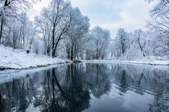 不冻结池塘在冬天 免版税库存照片