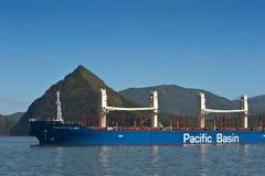 不冻港 俄罗斯- 2015年10月04日:一个巨大的散装货轮Shikoky海岛的弓停住的在路 库存照片