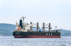 不冻港 俄罗斯- 2016年6月03日:在停住的散装货轮非洲燕鸥在路 库存图片