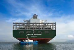 不冻港 俄罗斯- 2015年9月17日:在大集装箱船CMA CGM在海湾停住的密西西比的船尾的小猛拉 库存照片