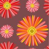 与Сhrysanthemum的无缝的模式 免版税库存图片