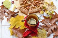 与一个上釉的杯子的一张明亮的照片热的茶、苹果饼、秋叶、肉桂条和红色编织了在白色的围巾 库存图片