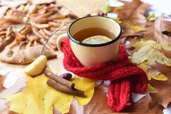 与一个上釉的杯子的一张明亮的照片热的茶、苹果饼、秋叶、肉桂条和红色编织了在白色的围巾 免版税库存照片