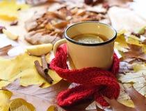 与一个上釉的杯子的一张明亮的照片热的茶、苹果饼、秋叶、肉桂条和红色编织了在白色的围巾 图库摄影