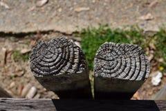与一个圆样式的木头 库存照片