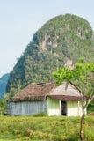 与一个土气房子的农村场面Vinales谷的在古巴 库存照片