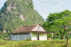 与一个土气房子的农村场面Vinales谷的在古巴 免版税库存图片