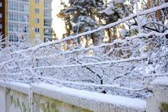 与一个多层的房子的具体篱芭铁丝网雪在背景中 免版税库存照片