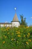 与一个天使的塔在古老Voznesensky Orshin修道院钉在夏天在特维尔地区,俄罗斯 库存图片
