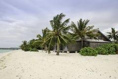 与一个小屋的马尔代夫海滩在Palmtrees 库存照片