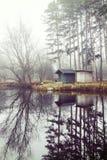 与一个小湖的冬天风景,自然 免版税图库摄影