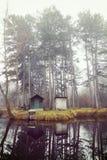 与一个小湖的冬天风景,自然 库存图片