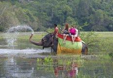 与一个小组的大象游人让在长得太大的池塘的树干喷泉 斯里南卡 免版税库存图片