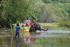 与一个小组的大象长得太大的池塘的欧洲妇女游人 在锡吉里耶附近的大象徒步旅行队 免版税图库摄影