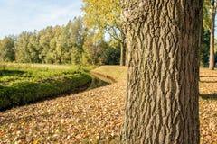与一个弯曲的垄沟的农村风景在秋季 免版税库存照片