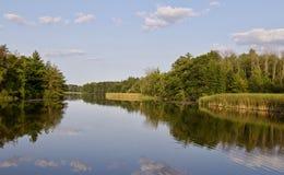 与一个惊人的湖和森林的背景 图库摄影