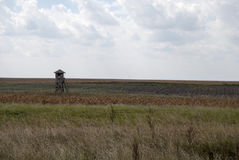 与一个木观测塔2的风景 免版税库存图片
