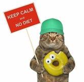 与一个滑稽的标志和一个黄色多福饼的猫 库存照片