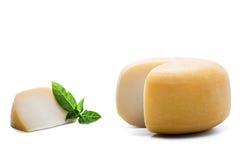 与一个片断的圆的乳酪在白色 免版税图库摄影