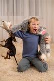 与一个玩具和一条狗的兴奋孩子在地毯 库存照片