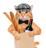 与一个瓶的猫酒和面包 免版税库存图片