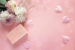 与一个礼物盒的白色大丽花在桃红色背景 复制空间 免版税库存照片