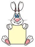 与一个空白的标志的灰色兔宝宝 免版税库存图片