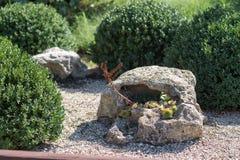 与一个空的中心的一块大石头在一个绿色庭院里在 库存照片