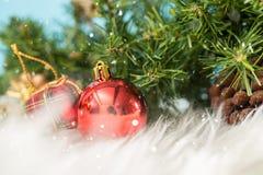 与一个红色装饰品礼物盒的圣诞节在雪的背景和冷杉 免版税库存图片