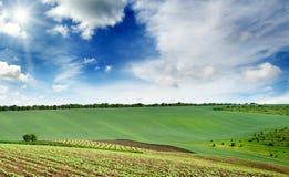 与一个绿色春天领域的美丽如画的农村风景由点燃了 库存图片