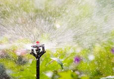 与一个自动供水系统的庭院灌溉 免版税库存图片