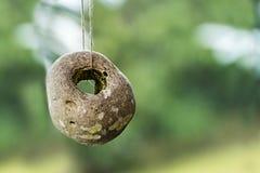 与一个自然孔的石头反对与拷贝的被弄脏的背景 图库摄影