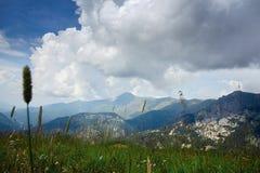 与一个草草甸的山风景前景的 免版税库存图片