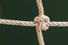 与一个被栓的结的渔船绳索 库存图片