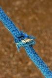 与一个被栓的结的绳索 免版税库存图片