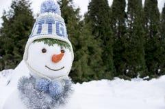 与一个被编织的帽子的雪人 免版税库存图片
