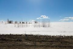 与一个被解冻的补丁的雪原 图库摄影