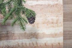 与一个锥体的绿色雪松分支在木背景 免版税库存照片