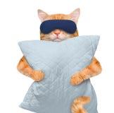 与一个面具的猫睡觉的与枕头 库存图片