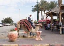与一个骆驼立场的骆驼司机预期在一头骆驼的乘驾在Yeriho在以色列 库存图片