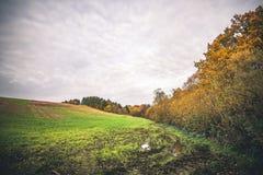 与一个水坑的泥泞的领域在秋天 免版税库存图片
