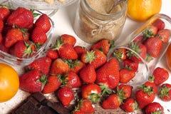 与一个黑暗的巧克力块的草莓 图库摄影