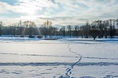 与一个冻湖的冬天风景,在雪的脚印, 免版税库存照片