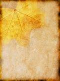 与一个黄色叶子样式的老纸 图库摄影