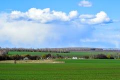 与一个绿色领域、云彩和农场的农村风景 图库摄影