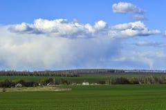 与一个绿色领域、云彩和农场的农村风景 库存照片