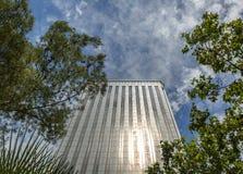 与一些植被的壮观的现代大厦在外部 库存图片