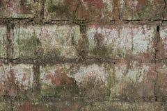与一些白色油漆的脏的砖纹理 免版税库存图片